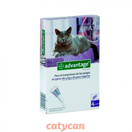 PIPETA ADVANTAGE GATOS DE 4 A 8 KG