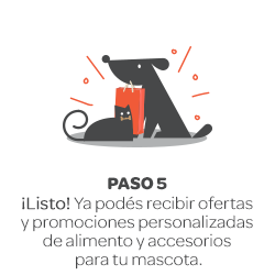 paso-1_1.png
